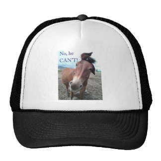 No he CAN'T! Donkey Cap