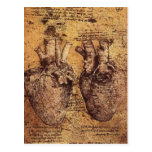 No higher resolution available. Heart_and_blood_ve Postcards