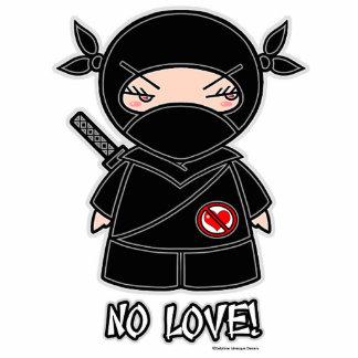 No Love! Ninja Photo Sculpture