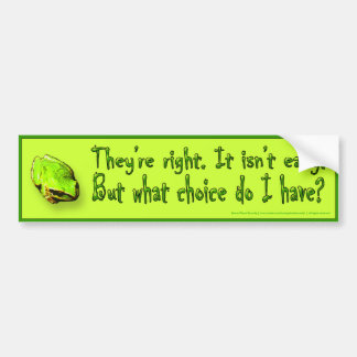 No one said it would be easy... bumper sticker