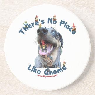 No Place Like Gnome Dog Coasters