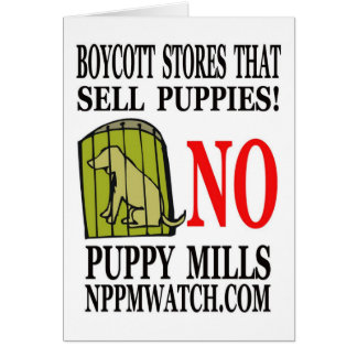 No Puppy Mills Note Cards
