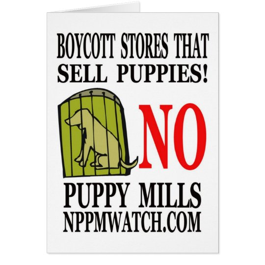 No Puppy Mills Note Cards