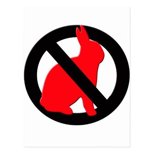 No Rabbits Allowed Post Card