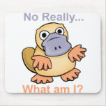 No Really... What am I? Platypus Mouse Pad