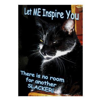 No Room For Slackers Feline Inspirational Poster