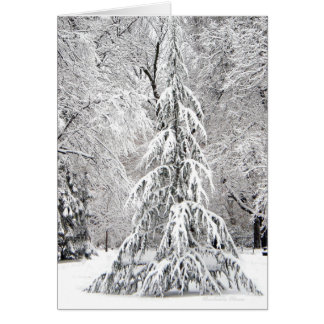 -No Snowflake Falls In the Wrong Place. Card