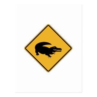 No Swimming - Alligators (1), Sign, Louisiana, US Post Card