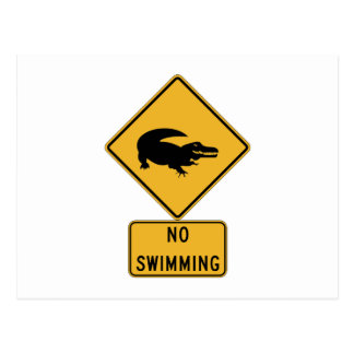 No Swimming - Alligators (2), Sign, Louisiana, US Postcard