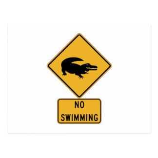 No Swimming - Alligators (2), Sign, Louisiana, US Postcard