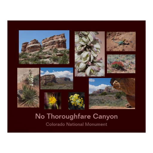 No Thoroughfare Canyon Travel Poster