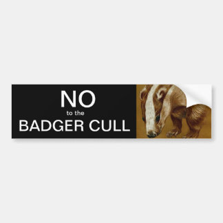 No to the Badger Cull bumper sticker