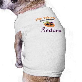 No Tricks Just Treats Personalized pet shirt! Shirt