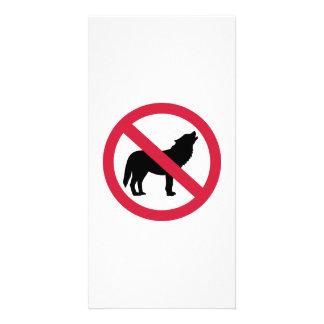 No wolves photo greeting card