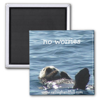 no worries sea otter square magnet