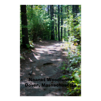 Noanet Woodlands Hiking Trail Poster or Canvas