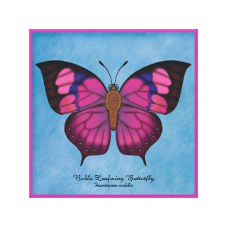 Noble Leafwing Butterfly Canvas Print