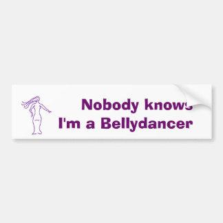 Nobody knows bumpersticker car bumper sticker