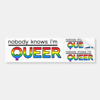 """""""Nobody Knows I'm Queer"""" Decal (3-in-1) Bumper Sticker"""
