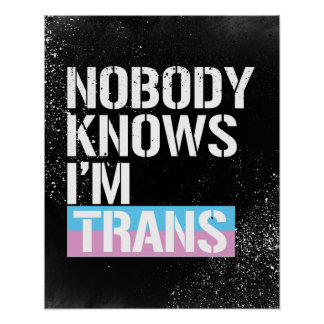 Nobody Knows I'm Trans - - LGBTQ Rights -  -  Poster