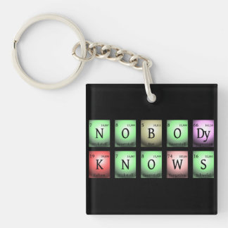 nobody knows in chemical elements Double-Sided square acrylic key ring