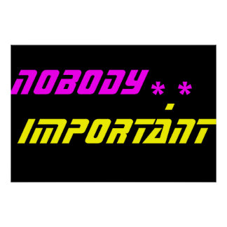 NobodyImportant*.* Poster