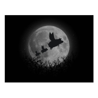nocturnal flying pig family postcard