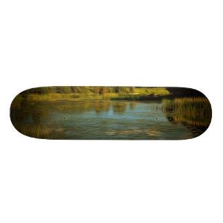 Noir view of a lake skate board