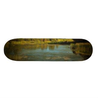 Noir view of a lake skate board decks