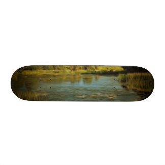 Noir view of a lake skateboard decks