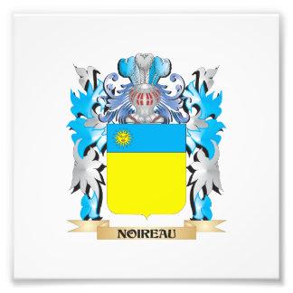 Noireau Coat of Arms - Family Crest Photo