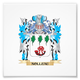 Nolleau Coat of Arms - Family Crest Photo Print
