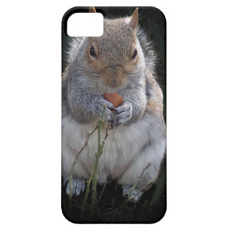nom nom nom nom nuts barely there iPhone 5 case