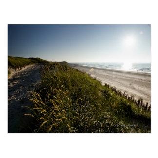 Norderney, East Frisian Islands, Germany Postcard