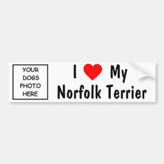Norfolk Terrier Bumper Sticker