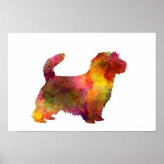 Norfolk Terrier in watercolor Poster