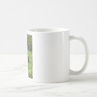 Norfolk Unicorn Hoax Unmasked Basic White Mug