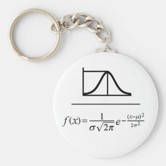 Normal Distribution Key Ring