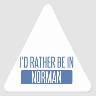 Norman Triangle Sticker
