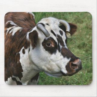 Normandy cow mousepad