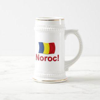 Noroc! (Cheers) Beer Stein