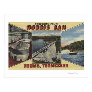 Norris, Tennessee - Greetings From Norris Dam Postcard