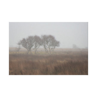 Norsey in the mist canvas print
