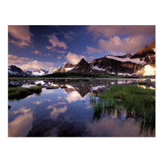 North America, Canada, Alberta, Jasper 4 Postcard