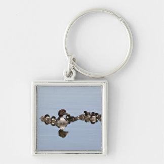 North America, Canada, British Columbia, Lac Silver-Colored Square Key Ring
