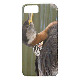 North America, Canada, British Columbia, Logan 2 iPhone 7 Case