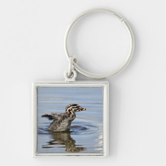 North America, Canada, British Columbia, Logan Silver-Colored Square Key Ring