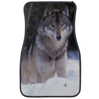 North America, Canada, Eastern Canada, Grey wolf Car Mat