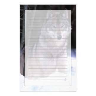 North America, Canada, Eastern Canada, Grey wolf Stationery