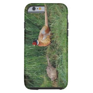 North America, Canada, Nova Scotia, Eastern 3 Tough iPhone 6 Case